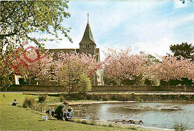 Picture Postcard, Buckland Church
