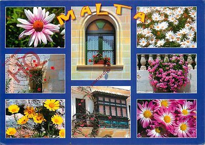 Picture Postcard:;Malta (Multiview) Flowers