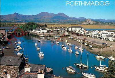 Picture Postcard::The Harbour, Porthmadog