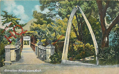 Picture Postcard:;Gibraltar, Whale Jaws Arch