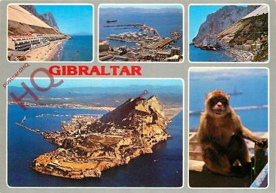 Picture Postcard; Gibraltar (Multiview)