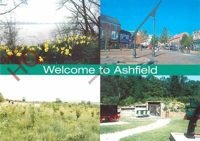 Picture Postcard~ Ashfield (Multiview)