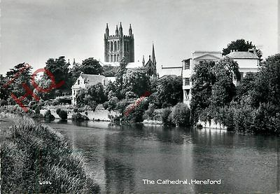 Picture Postcard--Hereford, The Cathedral