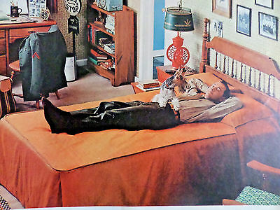 1959 Beautyrest by Simmons Ad Temptation  Schnauzer Dog