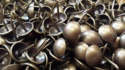 """UFFY- French Natural Antique Brass Decorative Upholstery Tack Nail 7/16"""" x 1/2"""""""