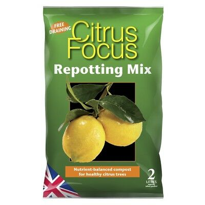 GROWTH TECHNOLOGY Citrus Focus Repotting Mix Terricci Giardino & Orto