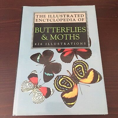 The Illustrated Encyclopedia of Butterflies and Moths Butterfly Book 1993