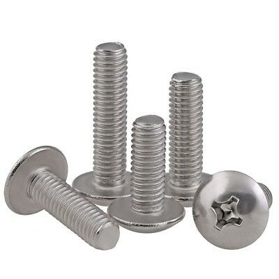 M5 M6 Truss Head Phillips Screws Machine Screws 304 A2 Stainless Steel