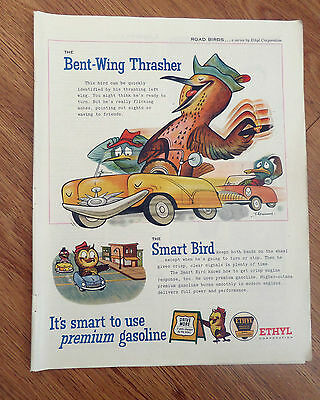 1955 Ethyl Gasoline Ad  Road Birds Series    Bent-Wing Thrasher The Smart Bird
