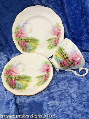 🌟 Meadowside Queen Anne Bone China Trio Teacup Saucer Side Plate Pink Blossoms
