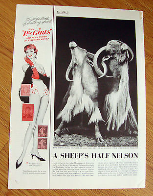 1957 Movie Ad Les Girls  Stamps