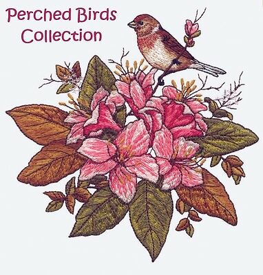 Perched Birds Collection - Machine Embroidery Designs On Cd
