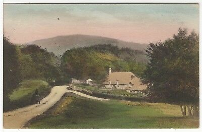 Cranham Near Stroud Gloucestershire Old Photo Postcard