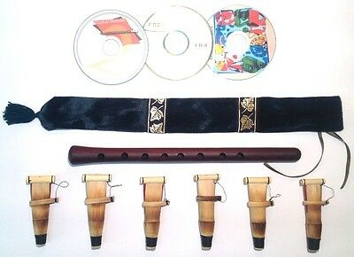 Duduk Professional Armenian 6 reeds CD case Flute Oboe Mey Ney Instruction NEW