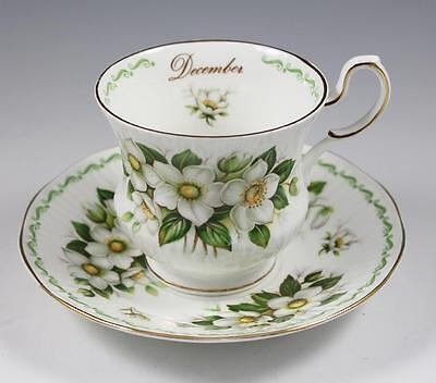 "Queen's Rosina China Co December ""Christmas Rose"" Tea Cup & Saucer"