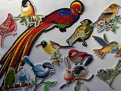 Pretty Embroidered Bird -  Iron / Sew on Patch Applique Badge
