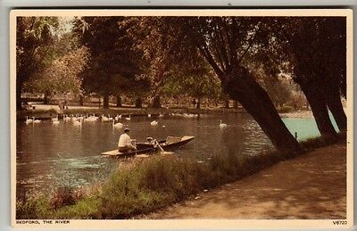 Bedfordshire - Bedford, The River - Postcard