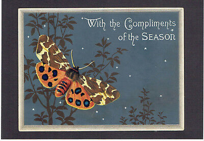 Marcus Ward Victorian Christmas Greetings Card Of A Moth