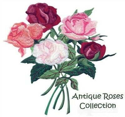 Antique Roses Collection - Machine Embroidery Designs On Cd