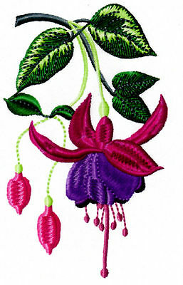Exquisite Fushsias Collection - Machine Embroidery Designs On Cd