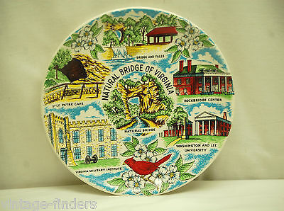 Old Vintage Natural Bridge of Virginia Souvenir Plate Americana Art China Co.