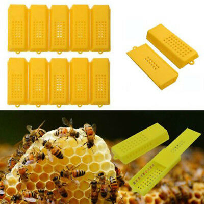 10pcs Extended Queen Bee Butler Cage Catcher Trap Case Plastic Beekeeping Tool