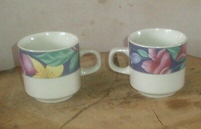 2 Irish Wicklow Vale Pottery Tea Cups With Floral Design