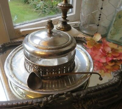 Charming Vintage French Silver Plate Beurrier Set  / Butter Dish With Scoop