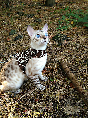 Butterfly Cat Jackets - Walking Harness Jacket Multiple Faux Fur Fabrics