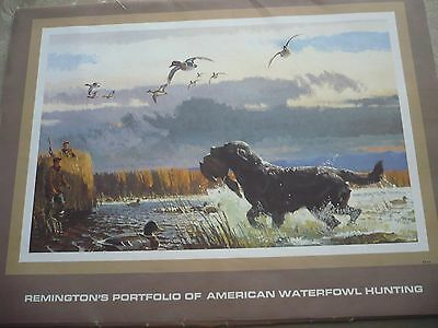 Remington Collection 12 Illustrations Of American Waterfowl