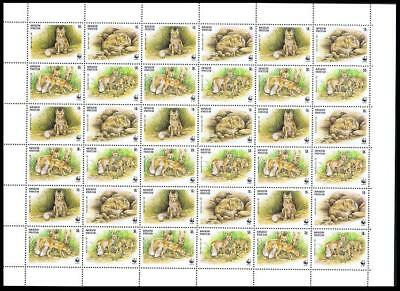 Kyrgyzstan WWF Corsac Fox Sheetlet of 9 sets/ 36 stamps SG#167-170 SC#122 a-d