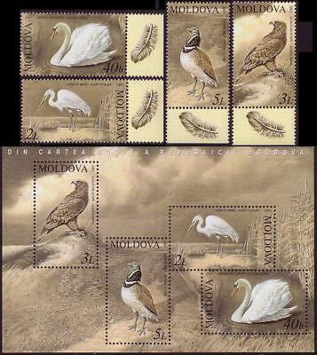Moldova Swan Eagle Bustard Egret Birds 4v with margins+MS issue 2003