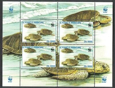 Sao Tome Olive Ridley Turtle Leaving water MS Type 3 SC#1403