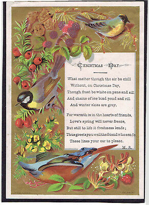 Marcus Ward Victorian Christmas Greetings Card Birds Brambles Hips Honesuckle
