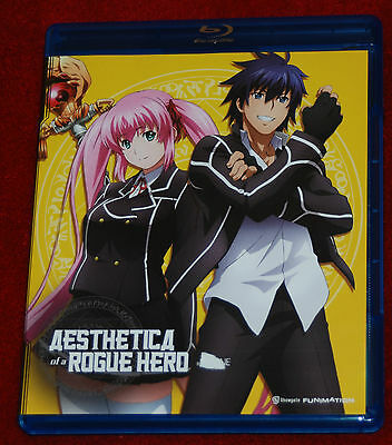 Aesthetica Of A Rogue Hero: Complete Series Funimation Anime 2 Disc Dvd Set