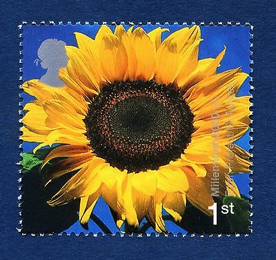 """Sunflower"" illustrated on 2000 stamp - Unmounted mint"