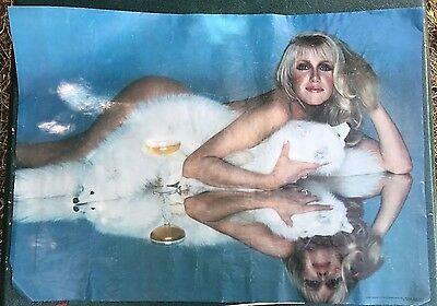 """Vintage 1979 Suzanne Somers POSTER Pro Arts Fox Rug Threes Company 20 x 28"""" Nude"""