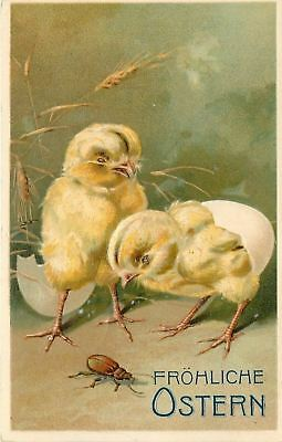 Easter~Curious Newborn Chicks~Egg Shell on Bottom~Check Out Beetle Bug~Emboss