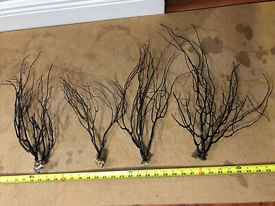 Black Sea Coral - Gloss Finish - Event Decor, DIY Project, Collectible