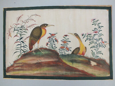 15) FINE CHINESE WATER COLOUR STUDY ON RICE/PITH PAPER OF BIRDS 19thC