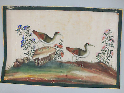 17) FINE CHINESE WATER COLOUR STUDY ON RICE/PITH PAPER OF BIRDS & FOLIAGE 19thC