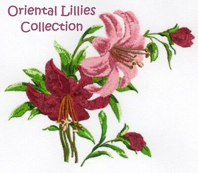 Oriental Lillies Collection - Machine Embroidery Designs On Cd