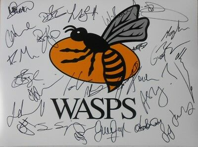 """Wasps Signed 2017 Rugby Union Photo x 27 inc Cipriani + Haskell etc.16""""x 12""""."""