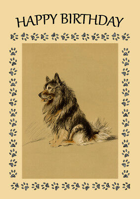 Keeshond Sitting Dog Birthday Greetings Note Card