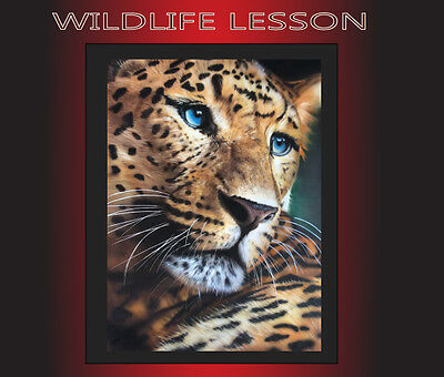 2 Day Wildlife Airbrushing Lesson With Xtreme Paint Studio
