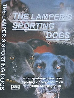 THE LAMPER'S SPORTING DOGS DVD - rabbit,hare,fox,lurchers,coursing
