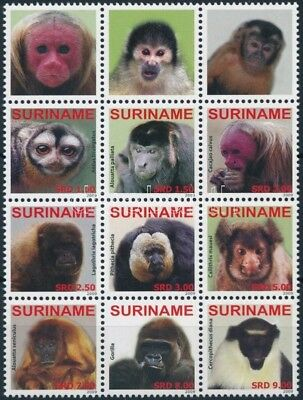 Namibia stamp Monkey block of 12 MNH 2009 Mi 2336-2344 WS245454