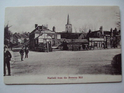 Hatfield from the Brewery Hill - 1907
