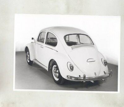 1964 Volkswagen Beetle ORIGINAL Factory Photograph wy7099