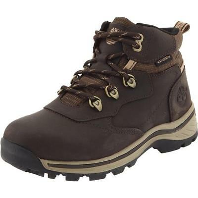 Timberland 5802 Boys White Ledge Brown Hiking Boots 8 Medium (D) Toddler BHFO